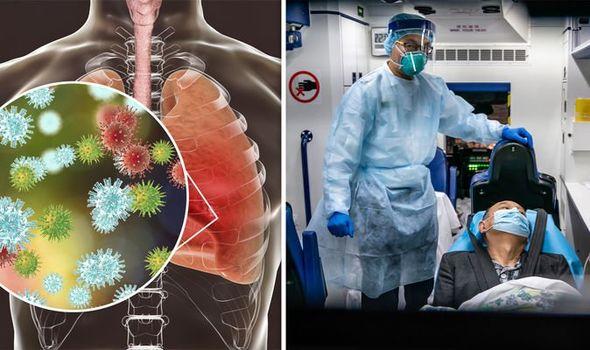how corona virus effect on humans ap govt explains