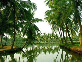 Godavari Districts
