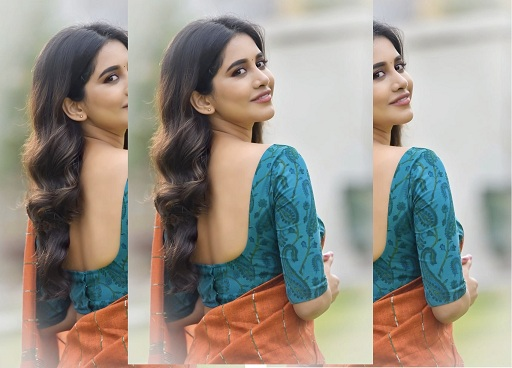 Nabha Natesth
